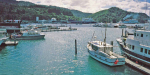 Olympus XA marina at Picton. Cook Strait ferries.